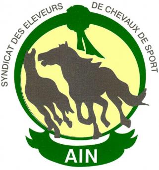 Syndicat_eleveurs_chevaux_de_sang_ain.jpg