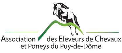 logo_2019_synd_63.jpg