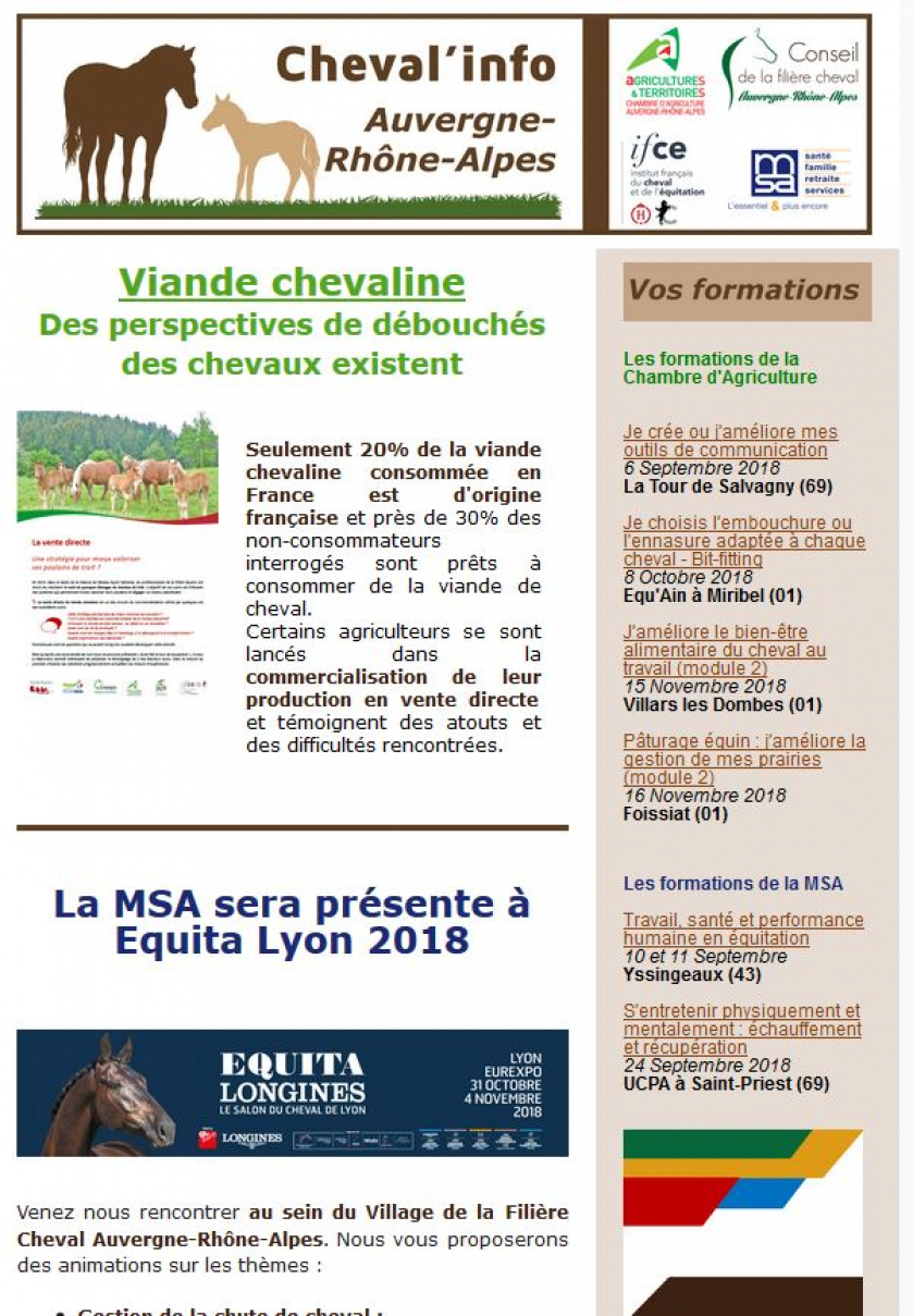 Couverture_Cheval_Info_22.JPG